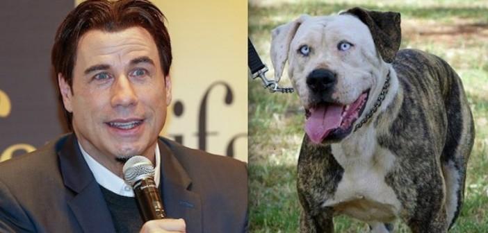 Джон Траволта и кучето Бъф