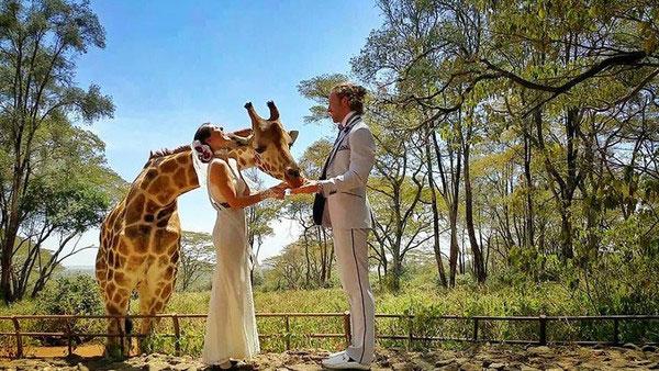 Сватба, сватби