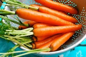 зеленчуци, моркови