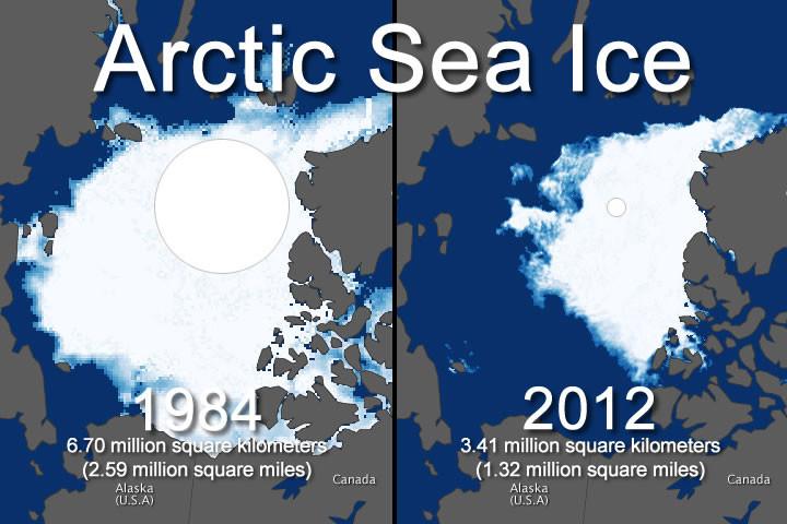Глобалното затопляне, Арктика
