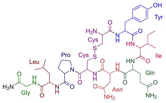 Oxytocin - Химична формула
