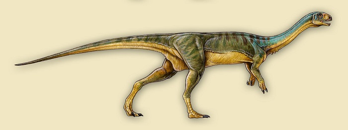 динозаври, Chilesaurus Diegosuarezi