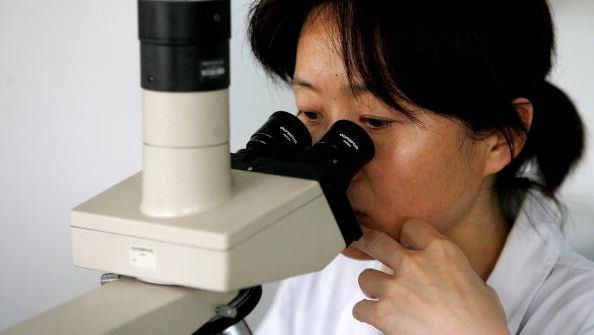 china human genom