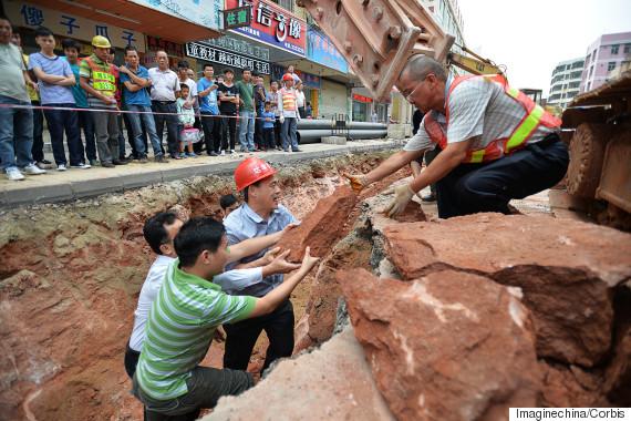43 яйца на динозавър от преди 230 милиона години откриха в Китай