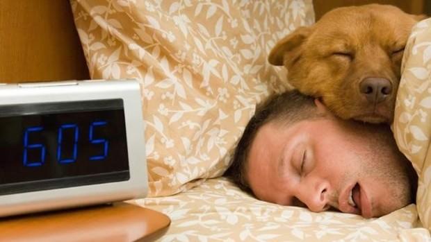 сън, недоспиване, диабет, затлъстяване