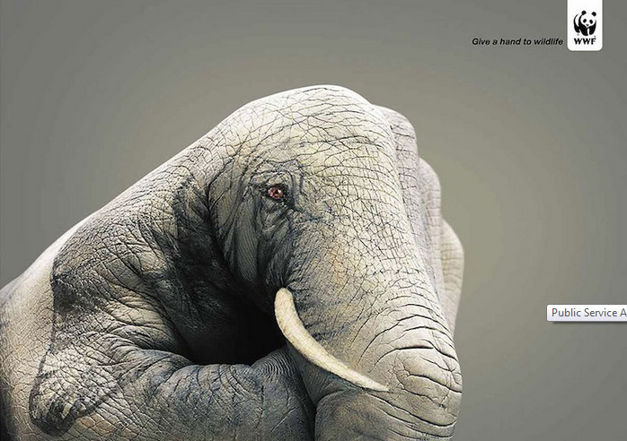 Give a hand to wildlife