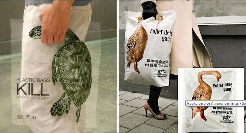 plastic bag kills