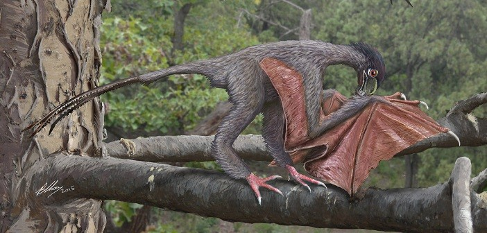 yi qi, динозавър
