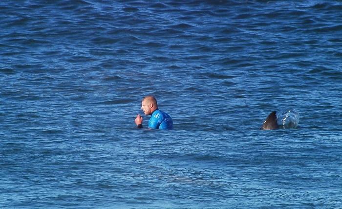 Мик Фанинг, акула, сърф