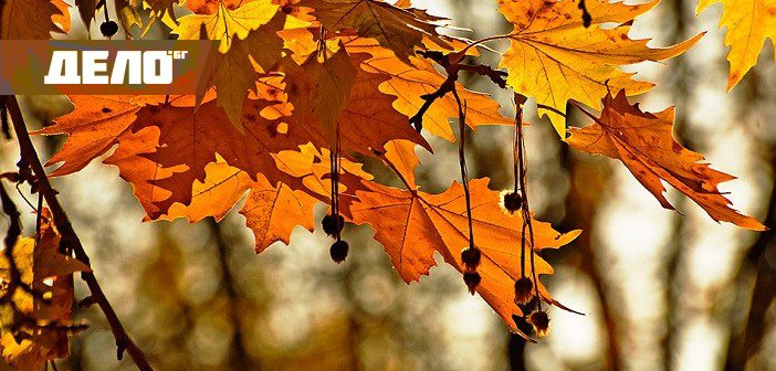 песни за есента