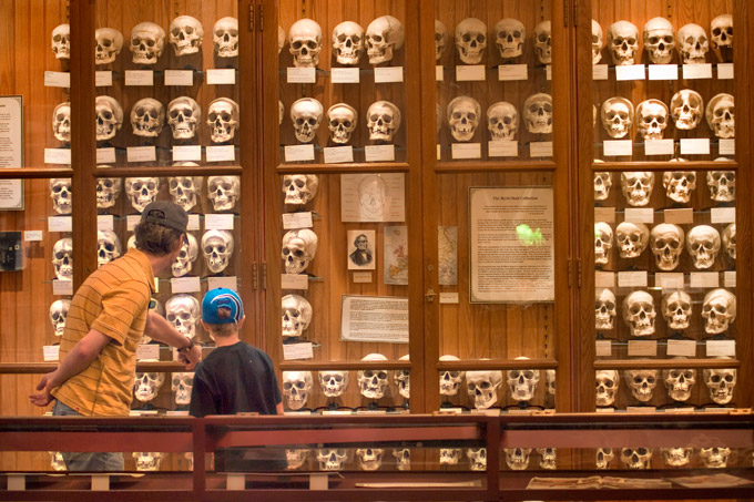 Музей Мютер (Пенсилвания)