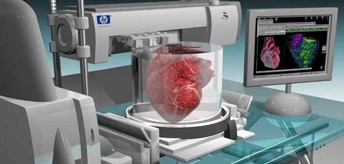 3D printed heart, сърце, бедрена кост, аорта