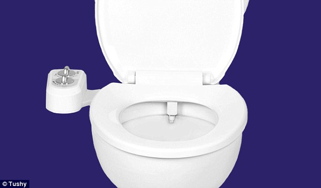 тоалетна хартия, биде