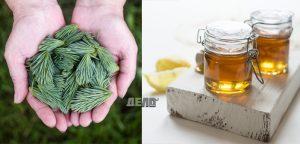 сироп за кашлица от борови иглички