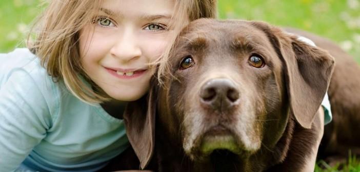 куче, сайт за запознанства с кучета