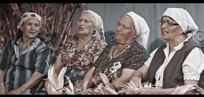 баби, Молдова, зеленчуци, плодове, кампания