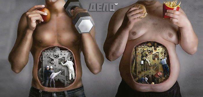 метаболизъм