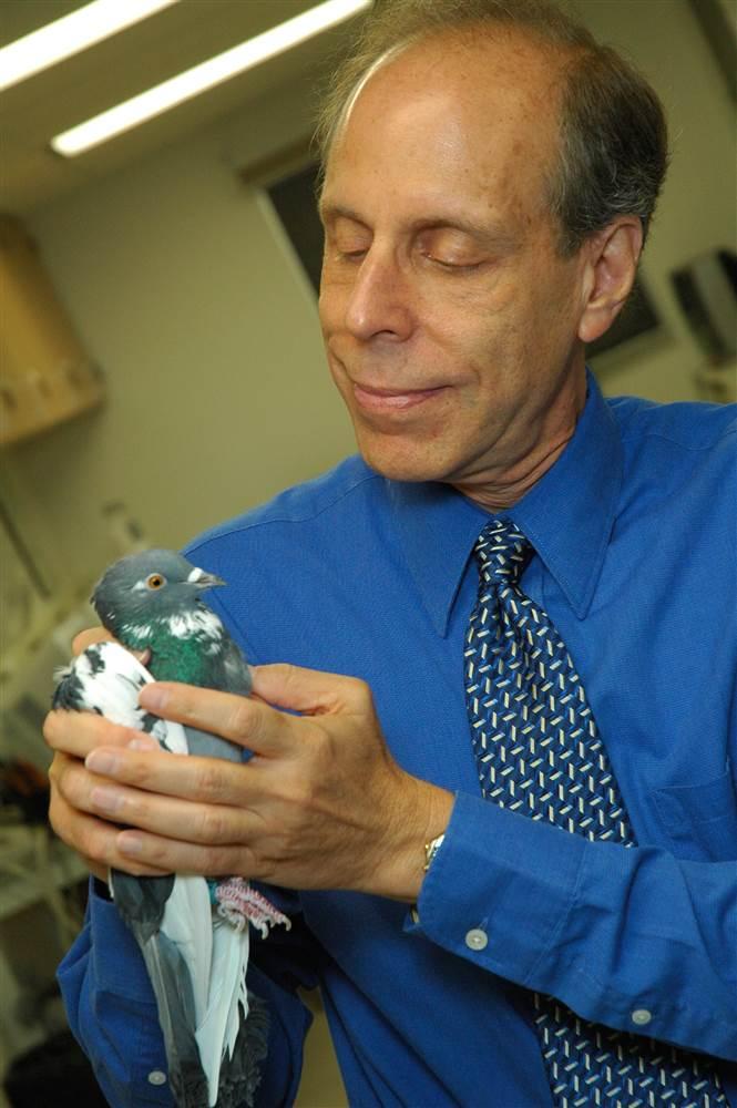 Edward Wasserman of The University of Iowa, гълъби, рак