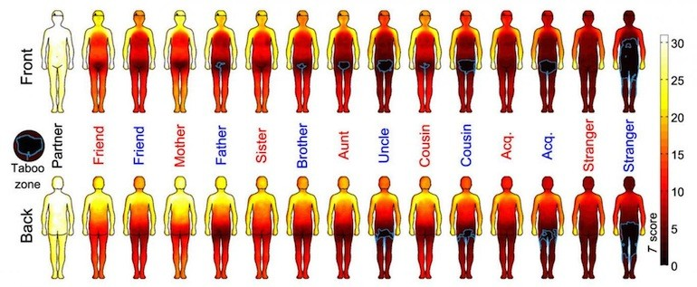 body-map-touch