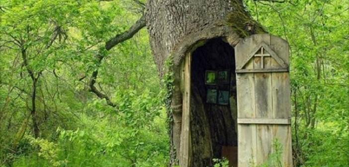 църква в ствола на дъб
