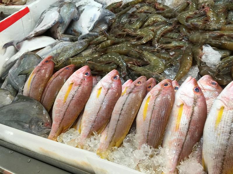 риба, солта, морски дарове