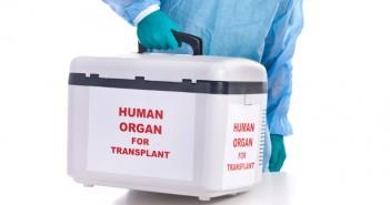замразяване, органи, клетки, тъкани