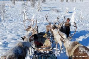 Якутия, Оймякон, минус 52 градуса, студ, Русия