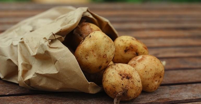 картофите може да са опасни за бременните