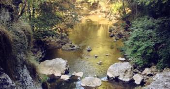 злато в река Ерма