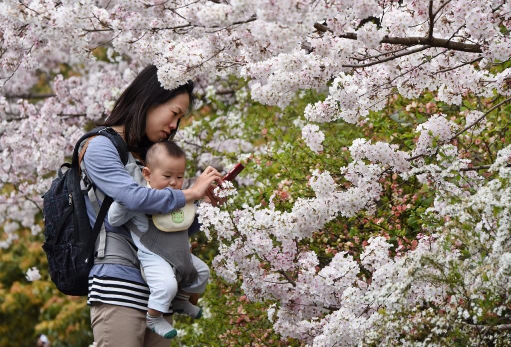 децата в Япония никога не плачат. Защо?