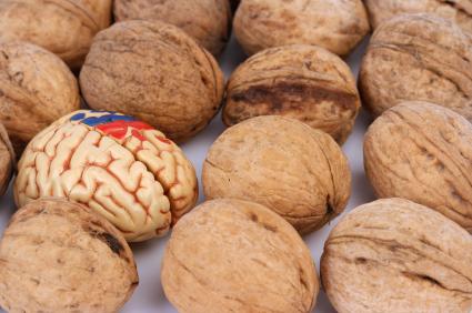 храни за мозъка