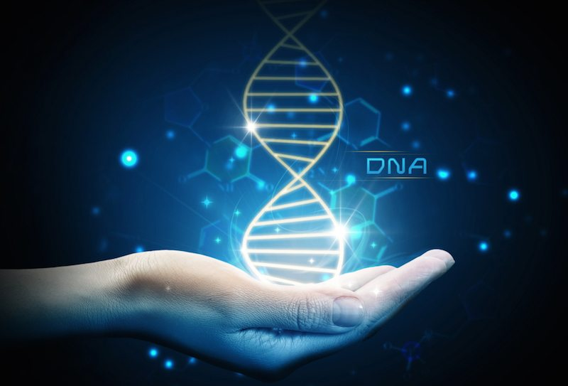 рак, Грег Брейдън, ДНК