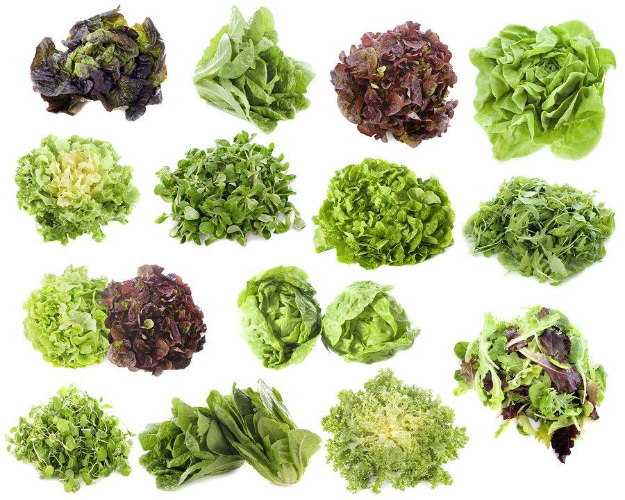 маруля, здравословна диета