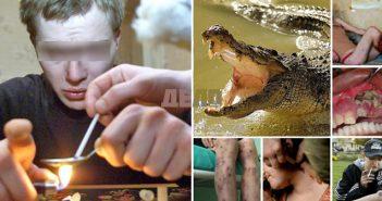 дрога , крокодил, наркотик