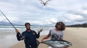 дрон, риба тон