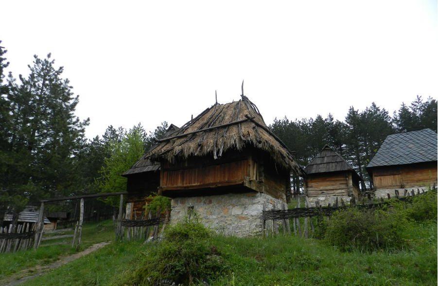 Сирогойно, Сърбия
