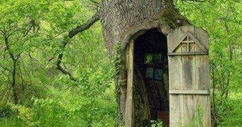 Параклис в ствола на вековен дъб