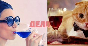 Синьо вино и вино за котки - новите летни глезотии