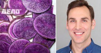 лилавият картоф е най-мощният убиец на рак на дебелото черво
