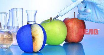 По какво да различим истинските плодове и зеленчуци от ГМО