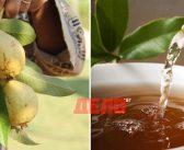 Пийте чай от листата на този плод срещу рак и акне