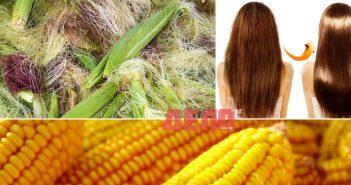 с коса от царевица правите отлична подхранваща маска