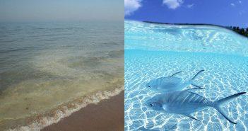 плажове