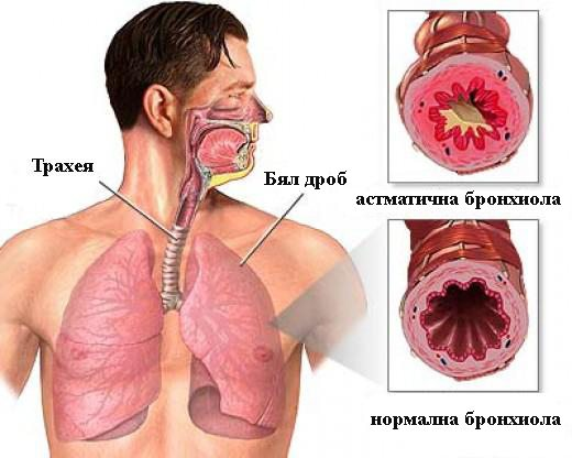 инхалаторът - начин на употреба