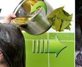 Рецепта с дафинови листа на Здравка Василева за бърз растеж и здрава коса