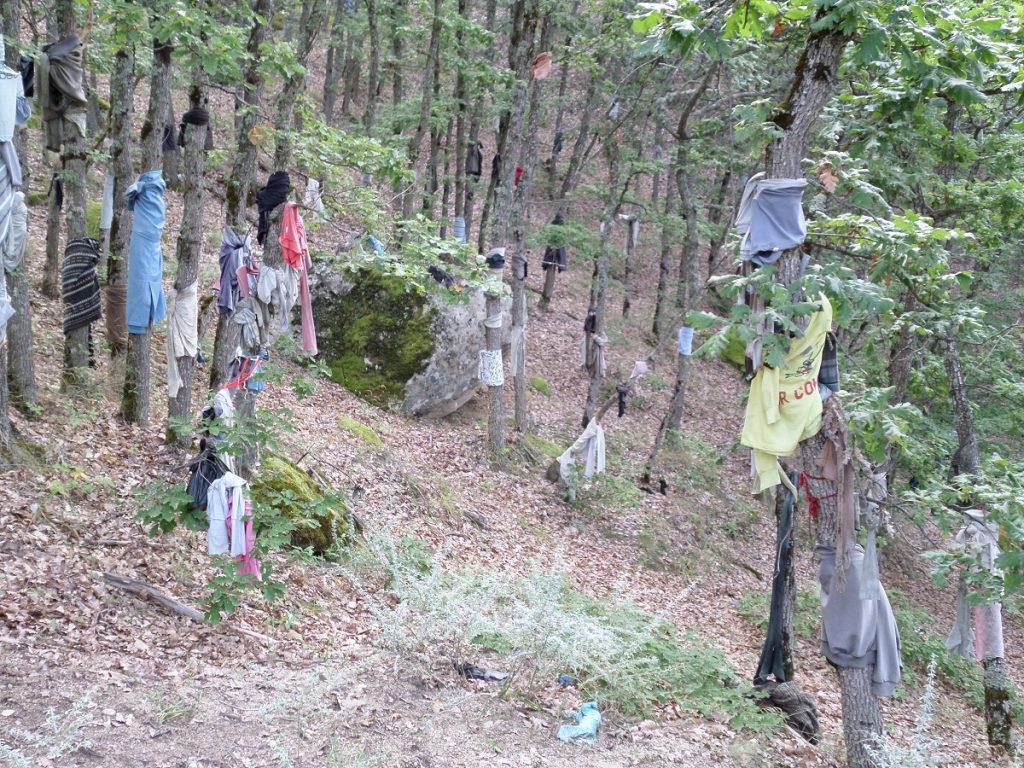 най-обикновено българско село, но пазещо нещо необикновено – древен ритуал за здраве, който се извършва на тракийското мегалитно светилище Скрибина.