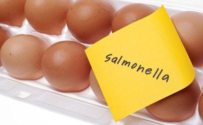 не съхранявайте никога повече яйца в хладилник