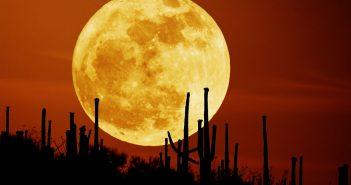 Супер Луна 2016, най-голямата Супер Луна, лунен перигей