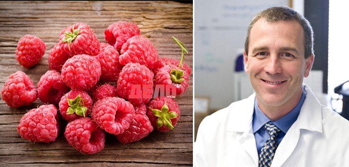 Д-р Дейвид Доусън: Киселина в малините доказано предпазва от рак