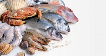 морски деликатеси вече не са толкова полезни